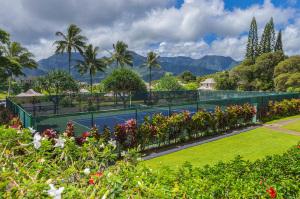 5454-Ka-Haku-Rd-Puu-Poa-309-large-027-1-Tennis-Court-1500x1000-72dpi