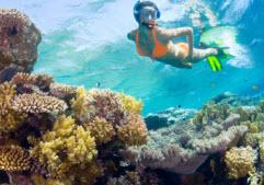 Kauai Snorkeling Kauai Oceanfront Condos