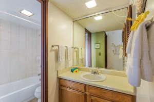 3700 Kamehameha Rd Sealodge B6-small-012-6-Bathroom-666x444-72dpi
