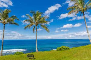 3700 Kamehameha Rd Sealodge B6-small-015-14-Bluff-666x444-72dpi