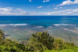 3700 Kamehameha Rd Sealodge B6-small-016-8-Reef-666x444-72dpi