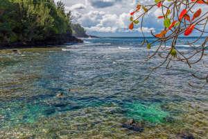 3700 Kamehameha Rd Sealodge B6-small-021-21-Snorkeling-666x444-72dpi