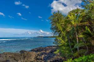 3700 Kamehameha Rd Sealodge B6-small-022-18-Coast-666x444-72dpi