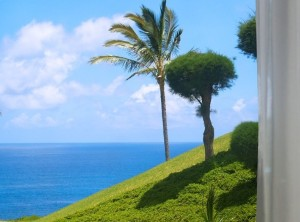 Sealodge Fabulous Oceanfront One Bedroom Condominium